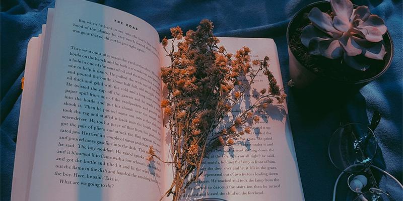 aesthetic books
